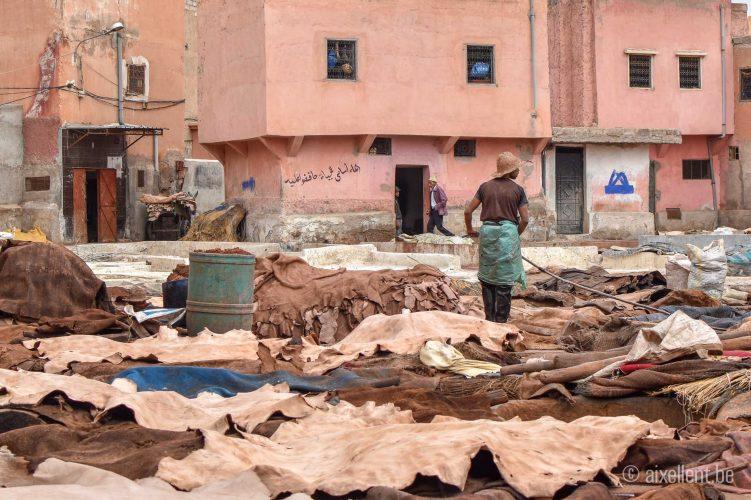 Marrakesh - Tanneries