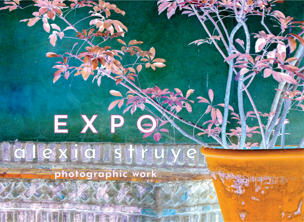 calendar EXPO 2 invite