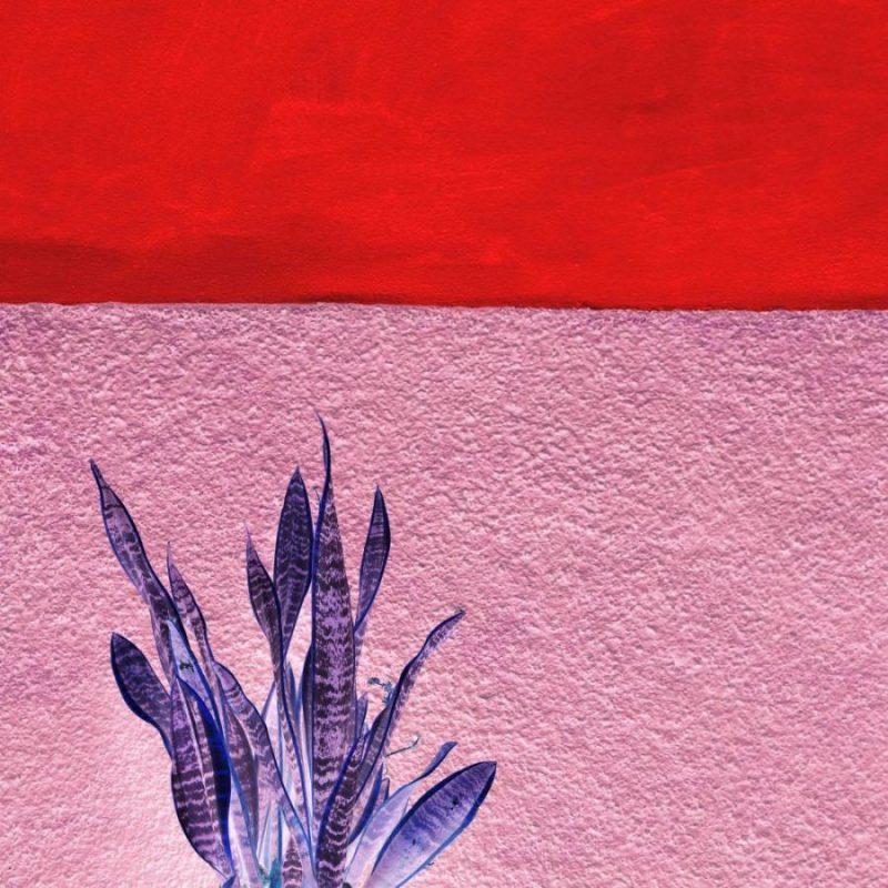 Gallery/artwork - IDA - Viñales